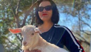 Şarkıcı Göksel: Henüz Göcek'ten ayrılmayı düşünmüyorum
